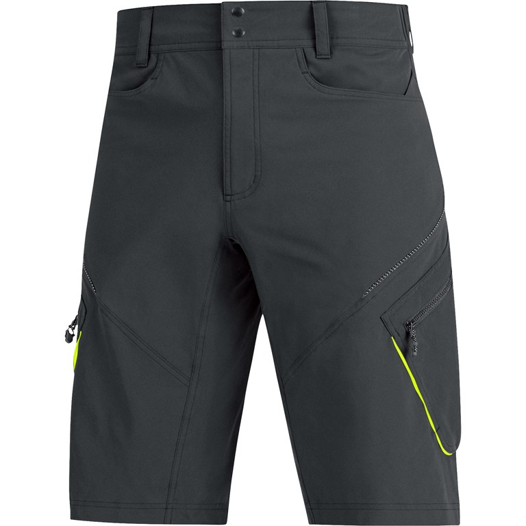 Gore Element Shorts (black)